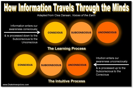 Learning process and Intuitive process