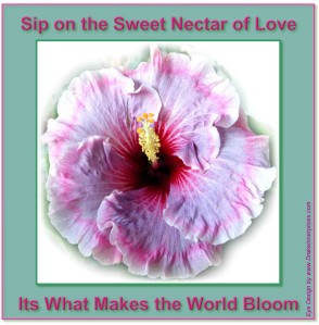 Sip on the sweet nectar of love, its what makes the world bloom