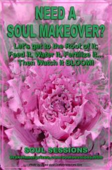 Soul Makeover