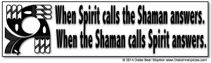 ShamanBumperSticker20sml