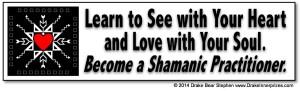 ShamanBumperSticker28sml