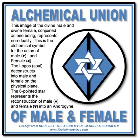 Graphic Dictionary Of Gender And Sexuality Symbols Bear With Me