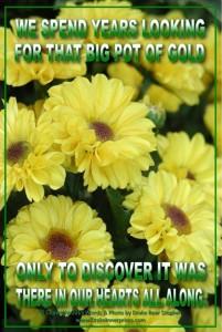 Flower Series 18sml